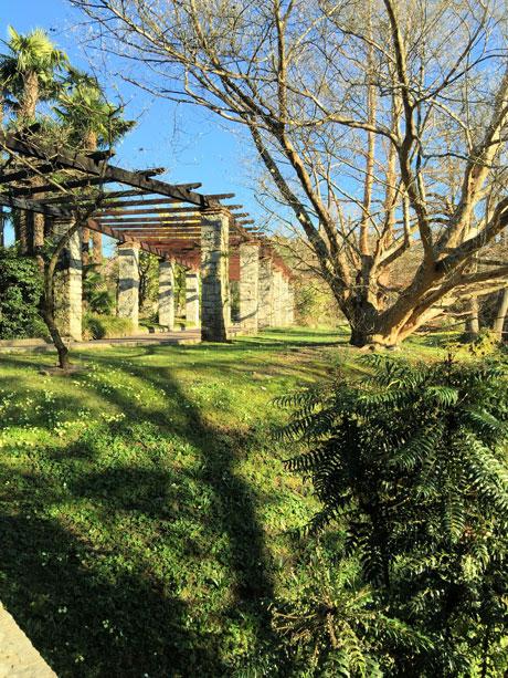 Cool poco dopo si incontrato i giardini terrazzati con - Giardini terrazzati immagini ...