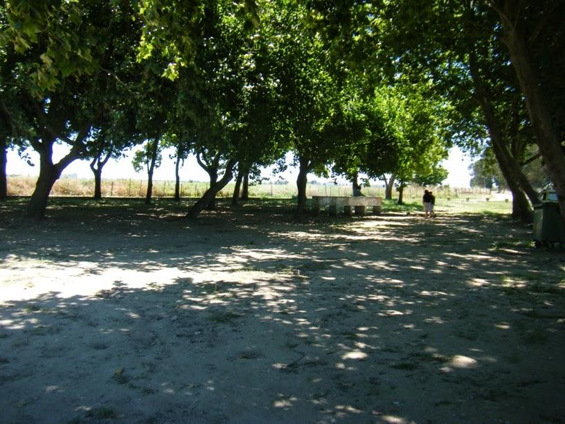 Parque de Merendas junto ao rio Tejo