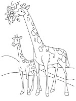 Giraffe Eating The Tree Coloring Pages