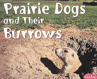 Prairie Dogs and Their Burrow children's book cover