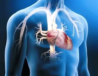 Causas incrementan riesgo enfermedad corazón
