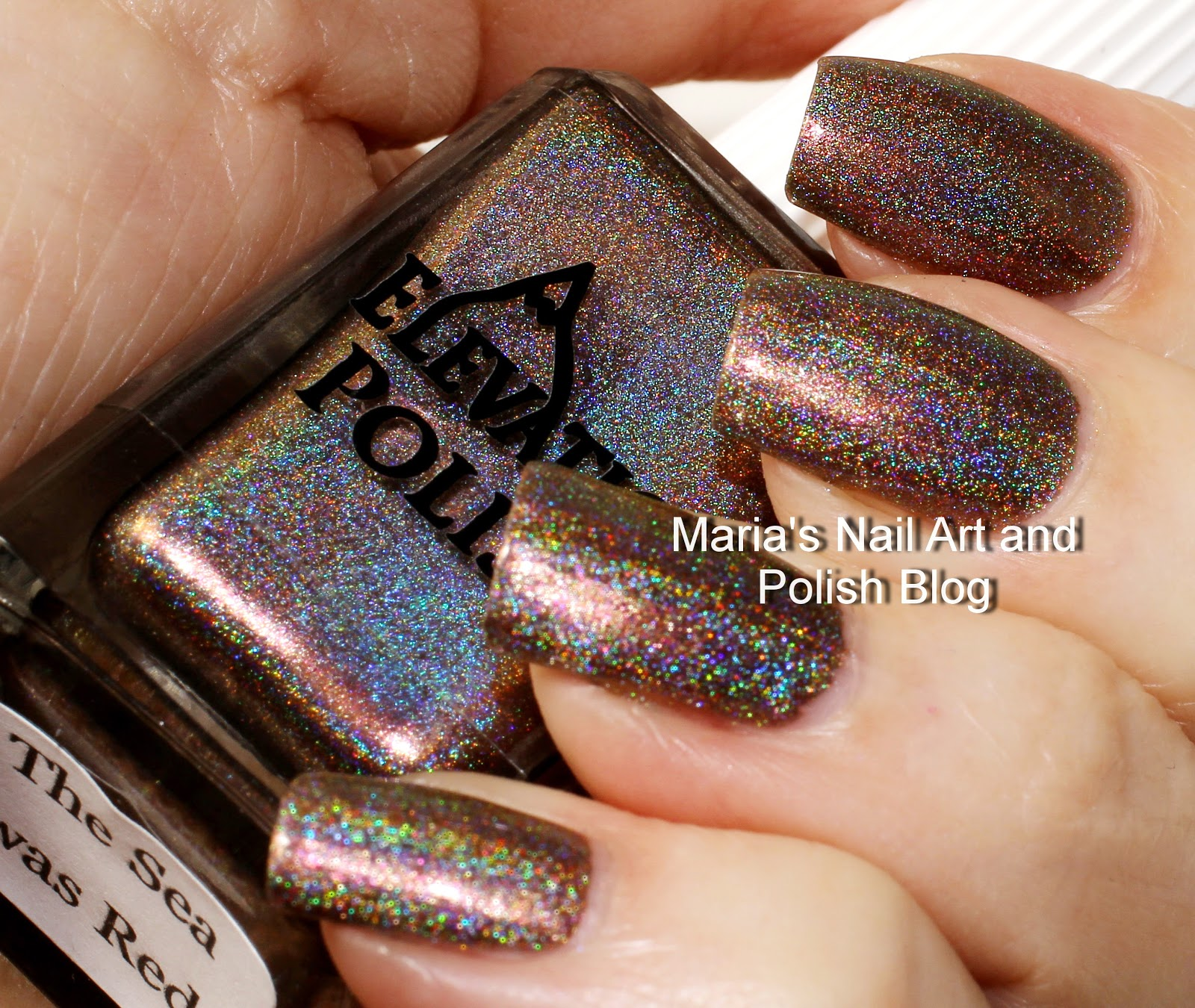 Marias Nail Art And Polish Blog Flushed With Stripes And: Marias Nail Art And Polish Blog: Elevation Polish Quarter