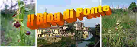 Il Blog di Ponte