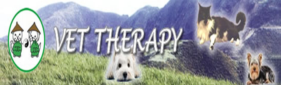 Vet Therapy