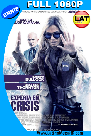Experta en Crisis (2015) Latino Full HD 1080P ()