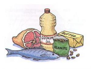 Ácidos grasos