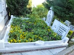Chistes de abogados - La tumba de la abuela.