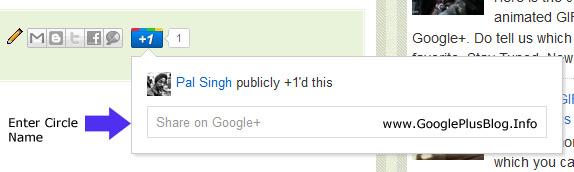 Google Plus +1 Button
