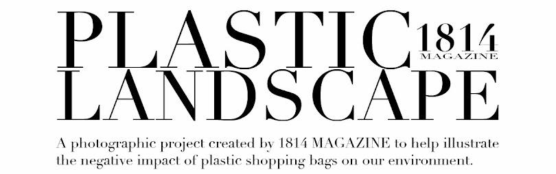 Plastic Landscape