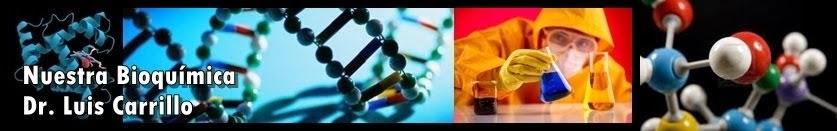"""Guía Didáctica """"Nuestra Bioquímica"""""""