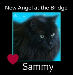RIP Sammy