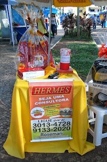 Em  09/04 recebemos na feira de artesanato o stand da HERMES