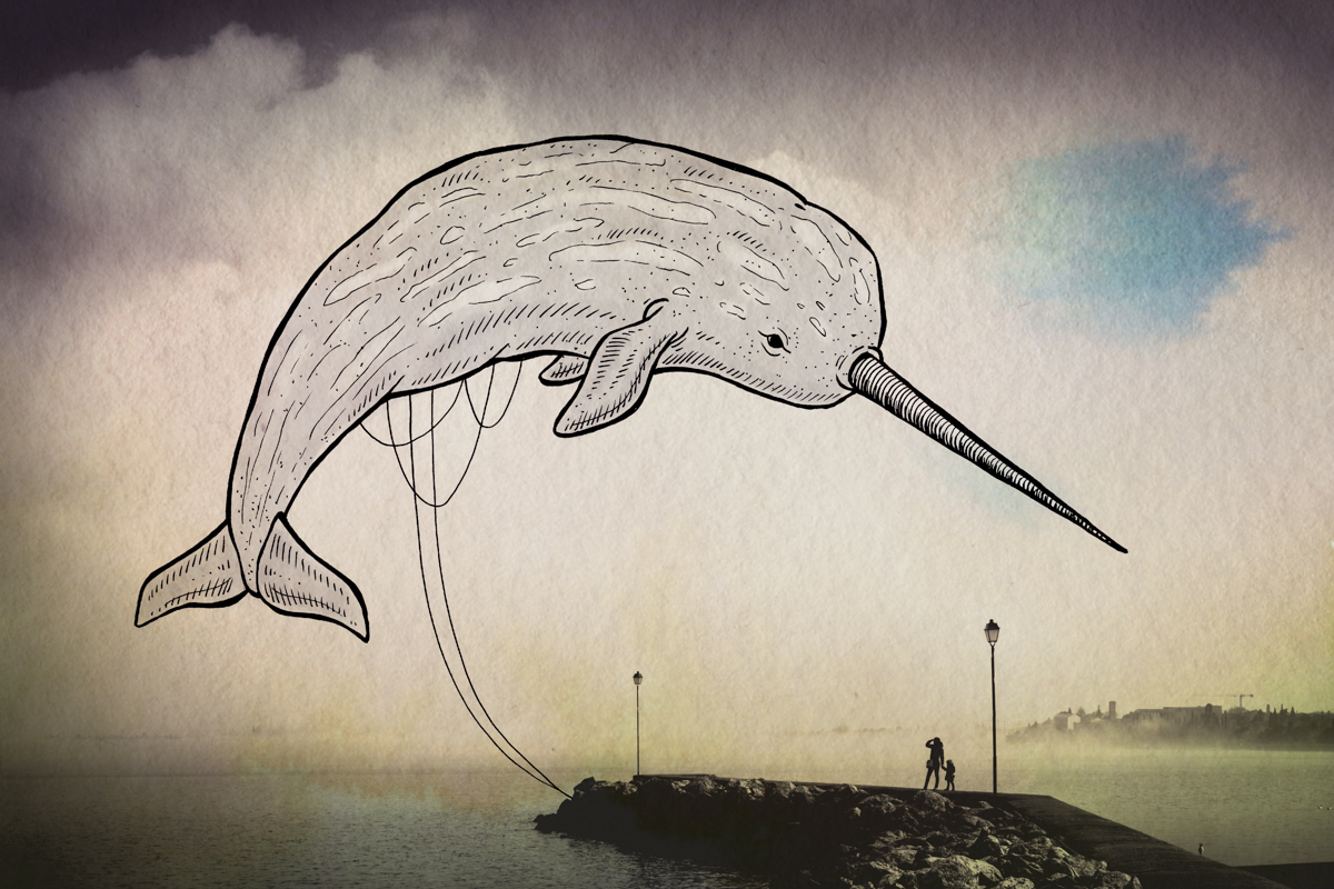 06-Narwhal-Giulia-Pex-Human-Body-and-the-Ocean-Drawings-on-Photos-www-designstack-co
