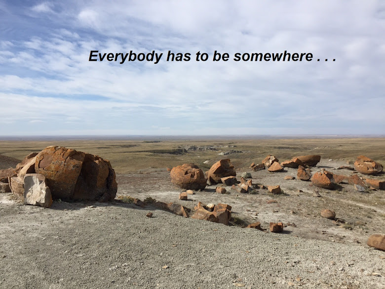 Everybody Has To Be Somewhere