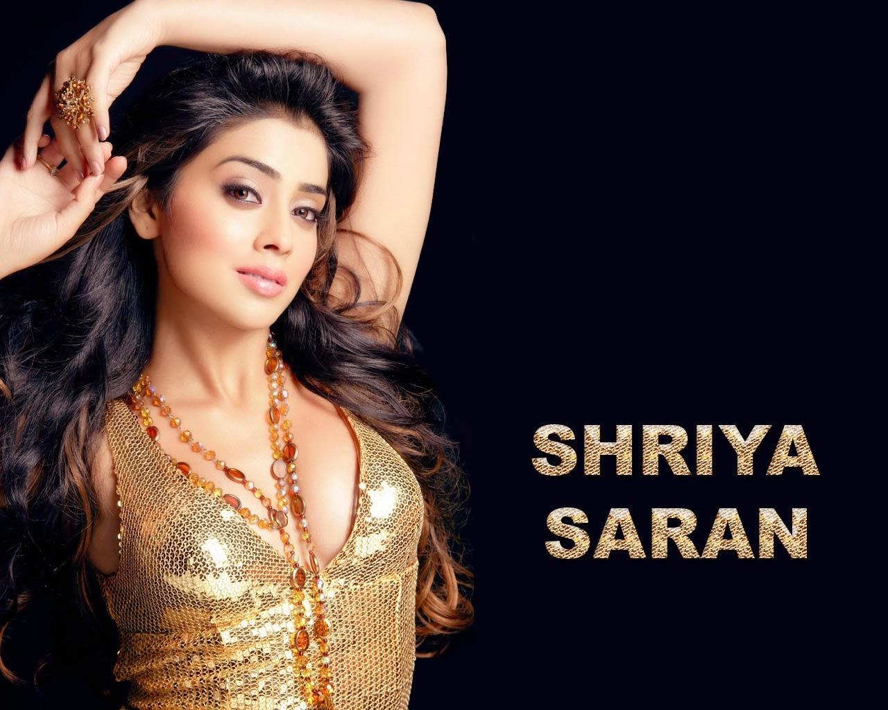 shriya saran wallpapers free download   indian hd wallpaper free