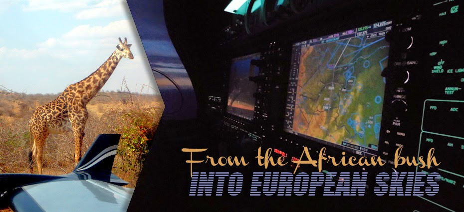 From the African bush into European skies