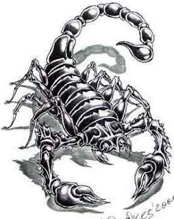 fotos e imagens de Tatuagens de Escorpião
