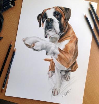 30 гиперреалистичных собачьих портрета карандашом