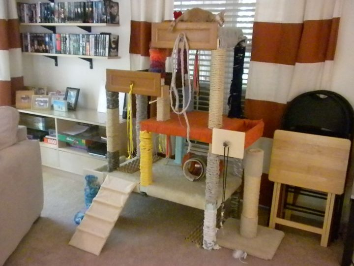 Diy cat tree done foster house for Diy cat tree