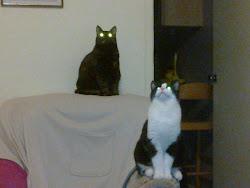 Yazz and Thomas