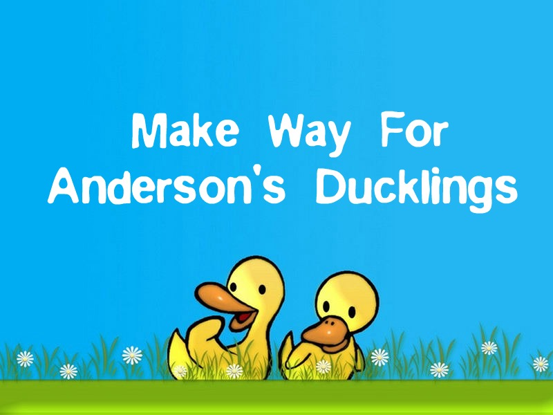 Make Way For Anderson's Ducklings