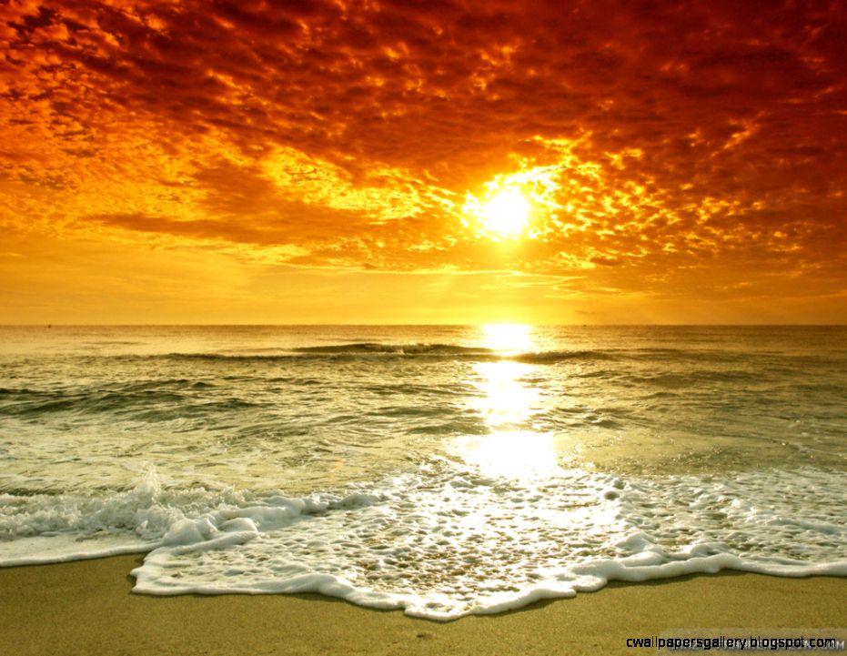 Wallpapers Beach Wonderful Summer Sun 1024x768  287673 beach