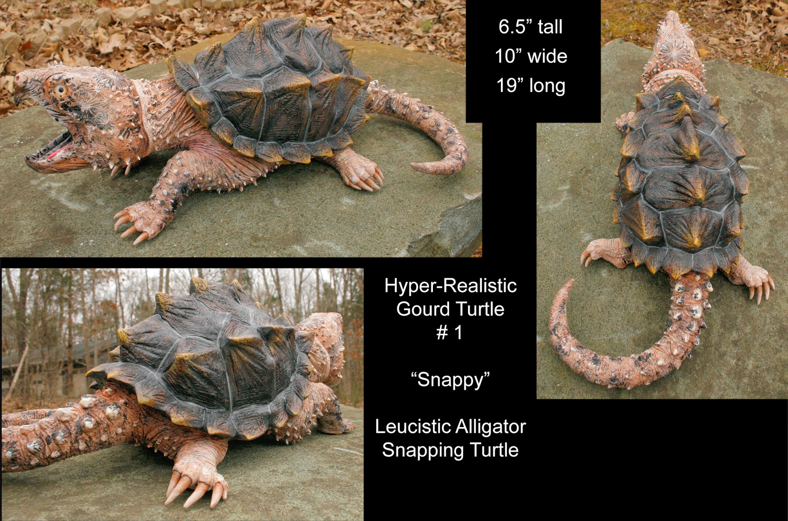 how to catch alligator snapping turtles