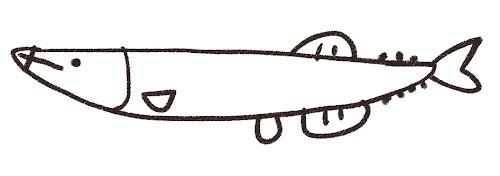 秋刀魚のイラスト モノクロ線画