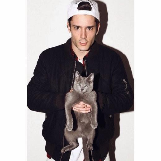Diego Nalbone cats