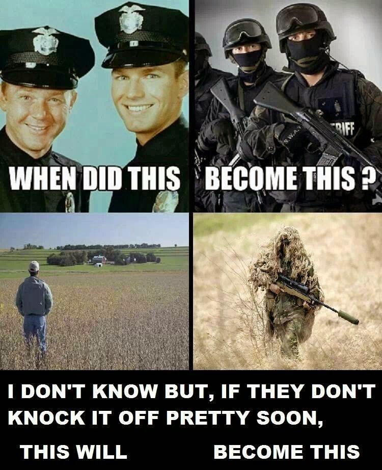 Sipsey street irregulars evolution of the american police state