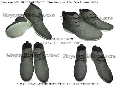 Giày tăng chiều cao GT238. 75