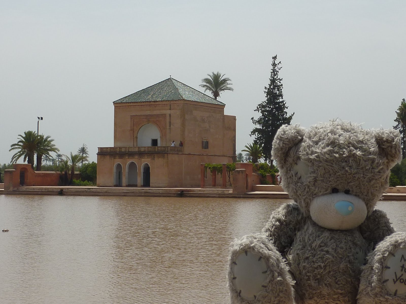 The travels of Tim and Megan: Marrakech, Morocco - Part 2