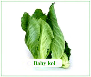 Baby cabbage stir-fry recipe at kusNeti kitchen 2015
