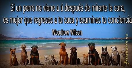Citas famosas de Wilson