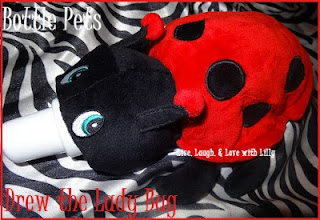 Drew, Lady bug, Review and Giveaway, Bottle Pets review, LLLwithLilly