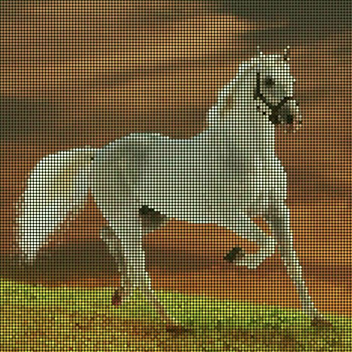 beyaz at mozaik efekt