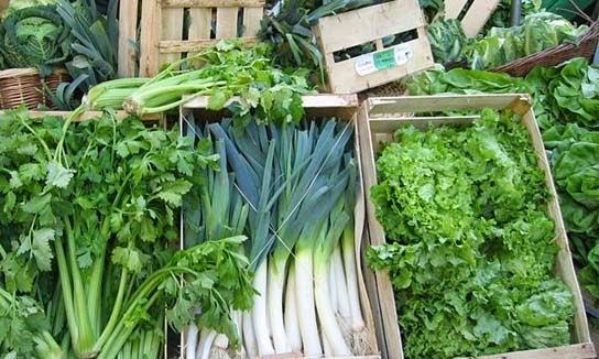 فوائد الخضروات الورقية للجسم بالصور