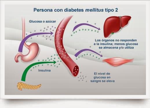gota lesiones en piel alimentos prohibidos en acido urico elevado alimentos permitidos y no permitidos para acido urico
