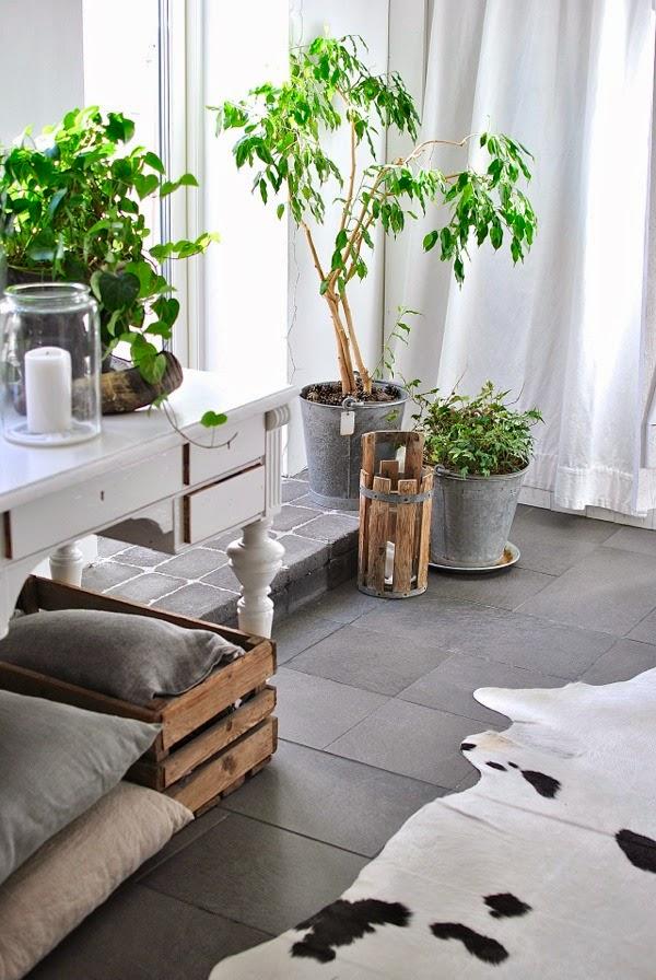Hannas vardagsrum kohud växter