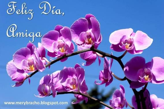 Feliz Día,  Querida Amiga. Mensaje cristiano para una amiga por día especial, cumpleaños, día de la madre, día de la mujer, graduación, éxitos. Frases cristianas para felicitar, frases de ánimo y aliento, bendiciones.