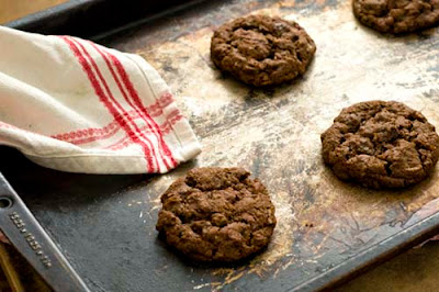 spicy chocolate pecan cookies
