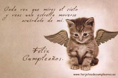 Feliz cumpleaños gato con alas