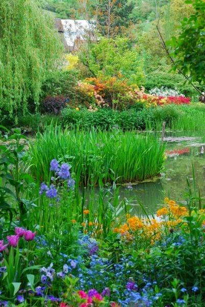 Ponds for your garden for Flower garden ponds