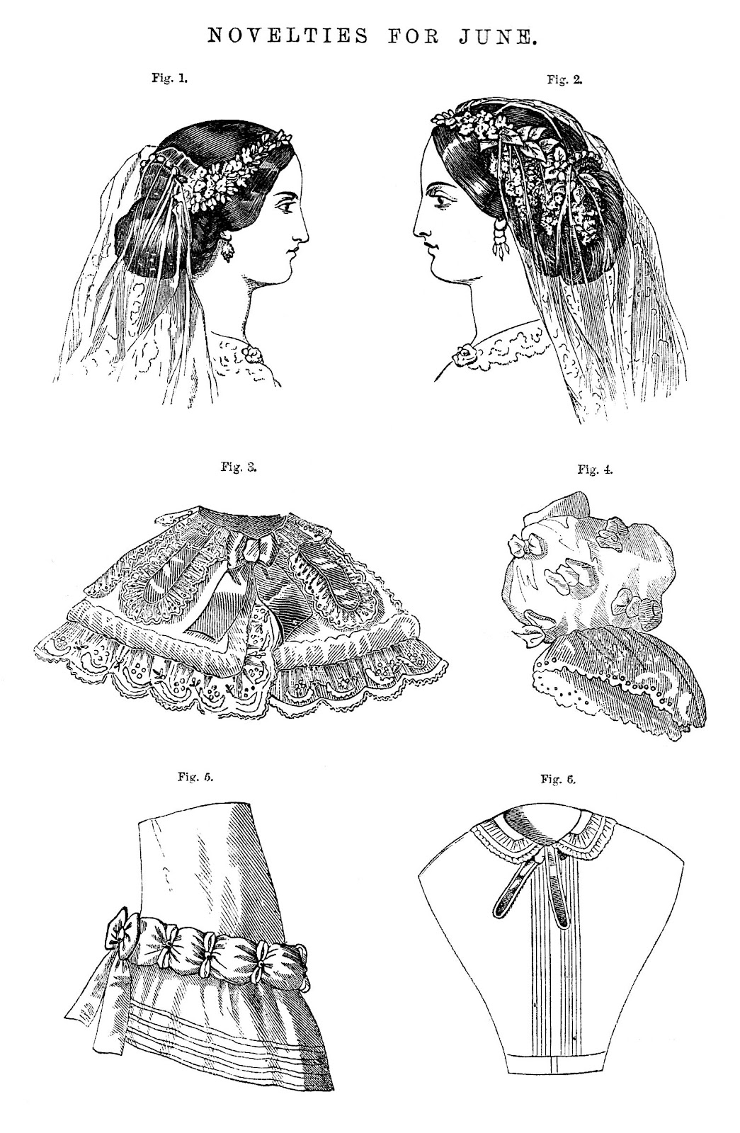 Victorian 1880 Fashion for Women