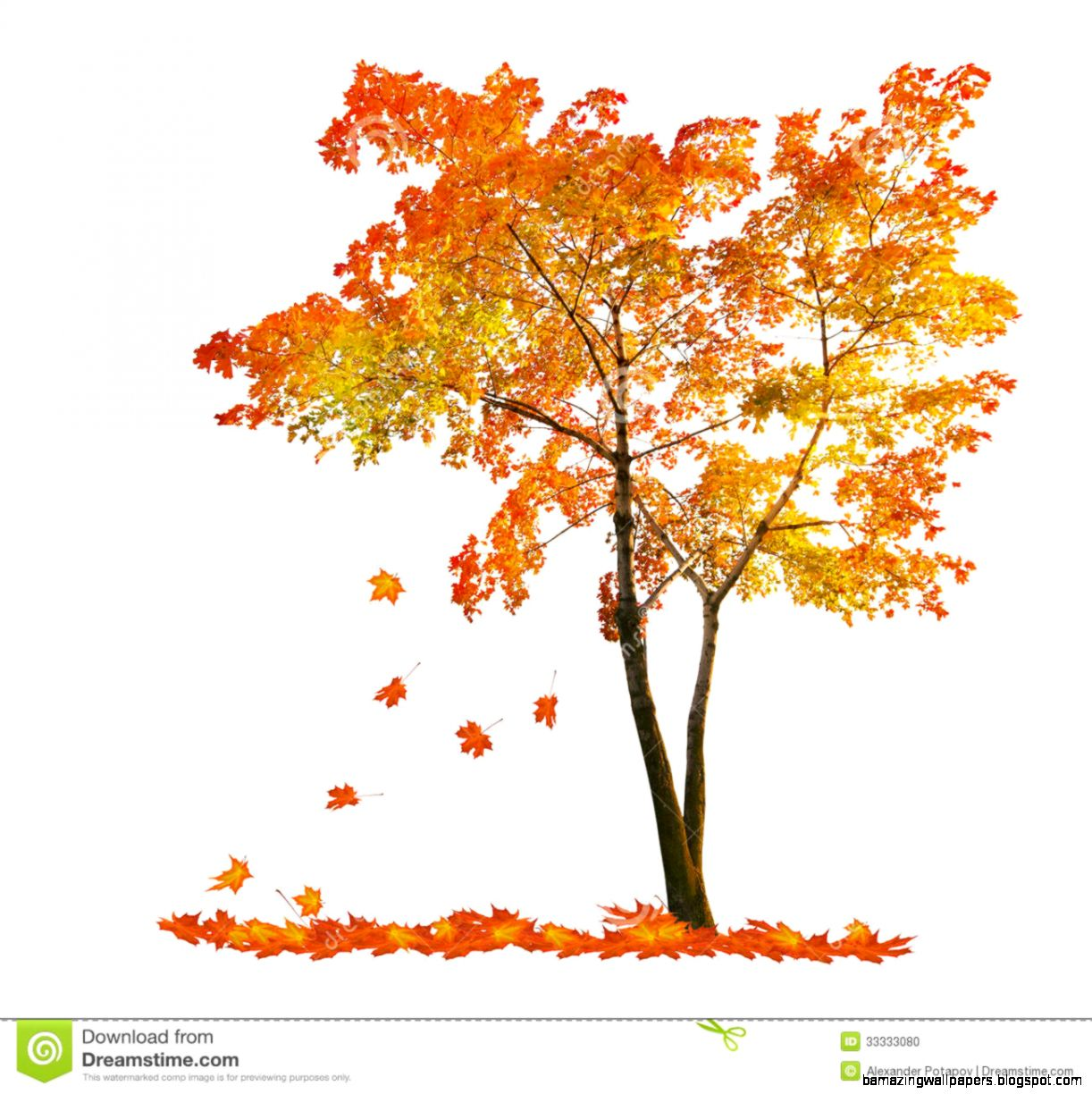 Clip Art Tree With Falling Leaves Clipart   Clipart Kid