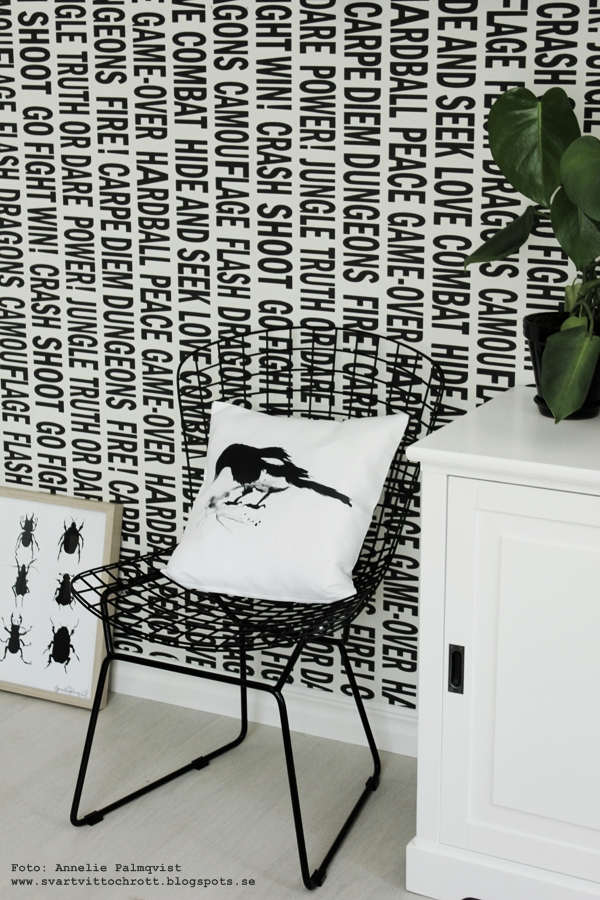 trådstol, stolar från jotex, kudde med tryck, kuddar med svartvitt motiv, skata på kudde, konst, skator, fågel, fåglar, motiv, webbutik, webbutiker, webshop, svart och vitt, svartvit tapet med text, grafiskt, grafisk, grafiska, tavla med skalbagge, skalbaggar på tavlor, poster, posters, print, prints, konsttryck, artprint, artprints, tavlor, eiffeltornet i inredningen, dekorera med eiffeltorn, kaktus, monstera, växter, blommor, inredningsdetaljer, inredning, inredningsblogg, bloggar, annelie palmqvist, vitt, vit, vita, nettbutikk, nettbutikker,