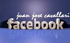 Facebook Diputado Cavallari