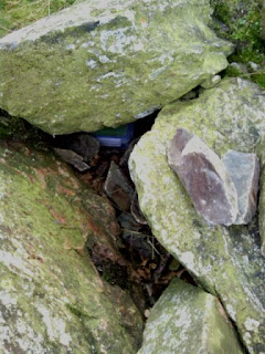 Beacon Hill Geocache revealed