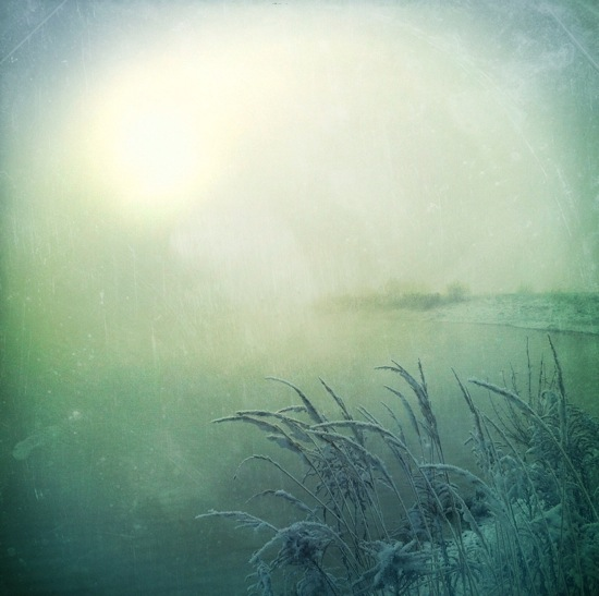 Cold Morning © M a r i k o