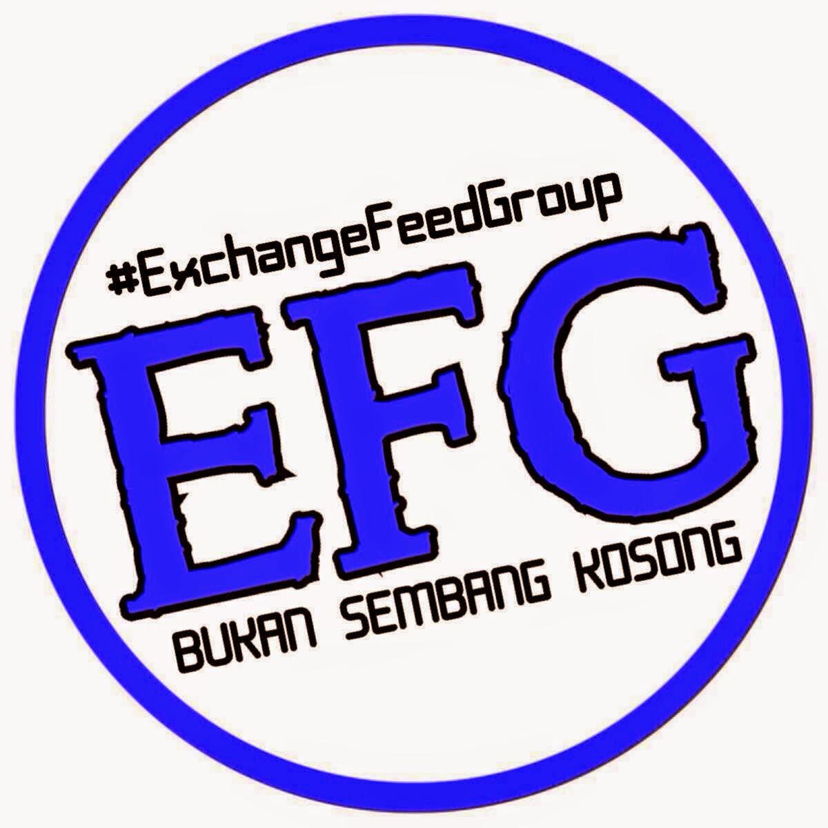 EFG, exchangefeedgroup, bukan sembang kosong, tips blogging, Blog Mesra SEO,